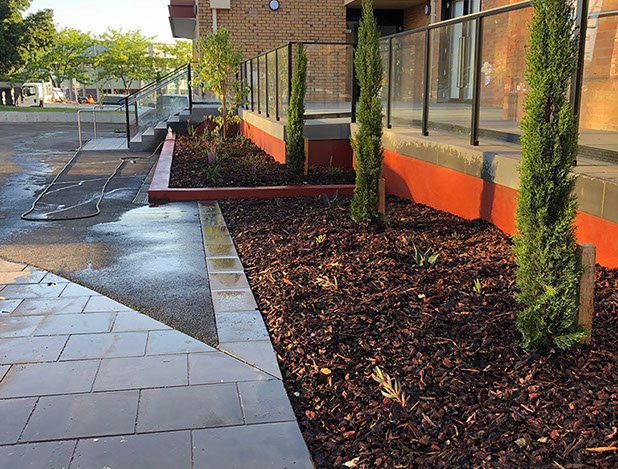 Planting finished to front beds